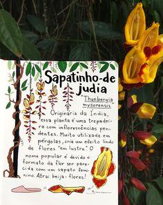 Glossário ilustrado de plantas on Behance Big Plants, Exotic Plants, Growing Plants, Garden Trees, Trees To Plant, Botanical Prints, Botanical Gardens, Flower Pot Design, Inside Garden