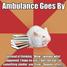 ambulance goes by instead of thinking wow i wonder what h - Science Major Mouse