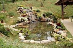 lagos ornamentais com cascata ile ilgili görsel sonucu