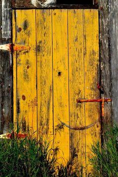 Freesia old door - used yellow