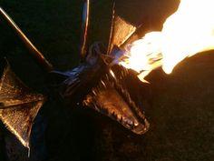 Drache Incense, Dragons