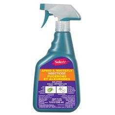 how to get rid of whiteflies in garden