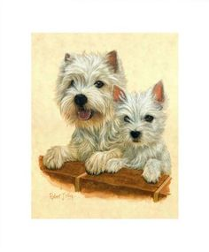Robert J. May original West Highland White Terrier Pup Painting
