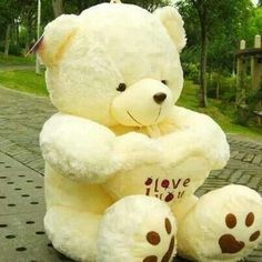 ... Buy Quality Gift Easter Directly From China Toy Tiger Suppliers: Free  Classic Toys Beige White Soft Cotton Teddy Bear Toy,best Gift For Valentine  Day