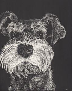 Schnauzer from Goofy Dog Studios Miniature Schnauzer Puppies, Schnauzer Puppy, Schnauzers, Goofy Dog, Scratchboard Art, Farm Dogs, Scratch Art, Wow Art, Dog Paintings