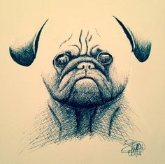 FrenchB : 2014 / Staedtler on Paper / S.Tusseau