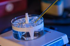 New medical gel grows bone tissue exactly where you need it
