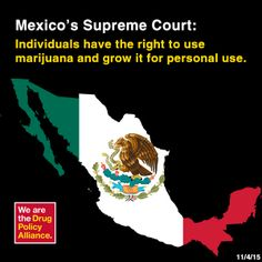 When it comes to drug cartels, Mexico is usually the first country that people think of. That's not to say that there aren't cartels in other countries, because Mexican Drug War, Drug Cartel, Puff And Pass, Supreme Court, Drugs, Hold On, Politics, Things To Come, High Times