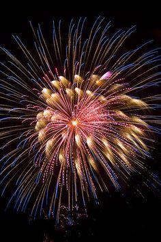Longwood Fireworks Show