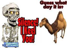 Damn Hump Day Camel