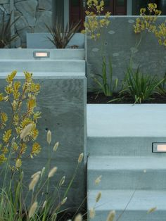 Board formed Concrete Wall with contrasting smooth patio