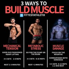 There are three mechanisms of hypertrophy: mechanical tension, metabolic stress, and muscle damage. If you neglect any one of them, you're . Gym Workout Tips, Gym Tips, Weight Training Workouts, Workout Challenge, Workout Men, Workout Routines, Bodybuilding Diet, Muscle Building Workouts, Muscle Fitness