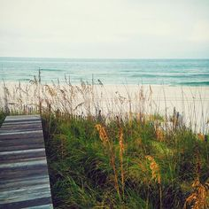 Beachscape at Inlet Beach, Panama City Beach, Florida