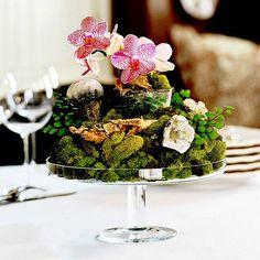 natural arrangement with orchids on a glass pedestal