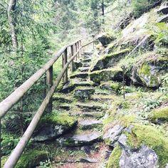 Alpe-Adria-Trail Garden Bridge, Trail, Outdoor Structures, Dog Food, Hiking