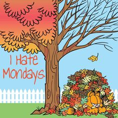 I wish Monday would just leave me alone. I hate Mondays. You feel me? I Hate Mondays, Garfield And Odie, Happy Day, Cat Day, Cover Photos, Comic Strips, Cats Of Instagram, Twitter Sign Up, All About Time