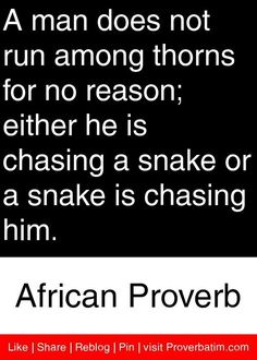 A man does not run among thorns for no reason; either he is chasing a snake or a snake is chasing him. - African Proverb #proverbs #quotes