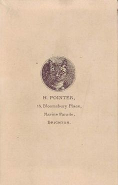 An engraved drawing of a cat decorating the trade plate of Harry Pointer Photographer, 15 Bloomsbury Place, Marine Parade, Brighton, as printed on the reverse of a carte-de-visite Riding Bikes, Picture Engraving, Tiny Stories, Brighton Uk, Lots Of Cats, Aesthetic Movement, Old Cats, Vintage Cat, Ex Libris