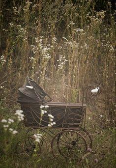 love this vintage stroller.