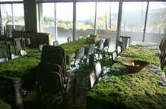 Moss coated tables in a cafeteria at an abandoned ski resort in Japan.