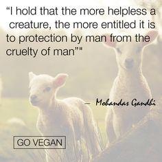 ❤️ #compassion #love