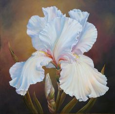 Yellow Iris Acrylic on canvas inches by Marianne Broome. Art Floral, Vintage Rosen, Yellow Peonies, Iris Painting, White Iris, Oriental Lily, Flower Artwork, Iris Flowers, Red Poppies