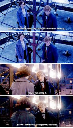 Fantastic Beasts and Where to Find Them - Take care of my creatures  Their eyes meet, a moment full of what they might have said to each other. by http://hardyness.tumblr.com/