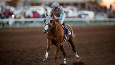 California Chrome Cruises in Winter Challenge Stakes   America's Best Racing. Look forward to seeing him race again the 28th of January 2017!
