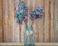 Flores de Hortensia azul, ramo preservado Hortensia, hortensias PeeGee, siemprevivas, hortensias Color azul Bi, conservada hortensias azules