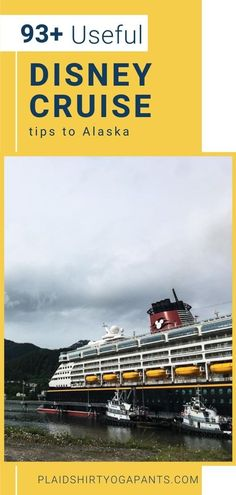 Usa Travel Guide, Travel Usa, Travel Tips, Travel Articles, Alaska Cruise Tips, Alaska Travel, Cruise Travel, Disney Cruise, South America Travel