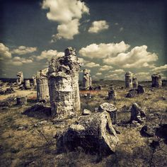 A stone forest in Varna, Bulgaria. An ancient seabed and what's left after the water went away....