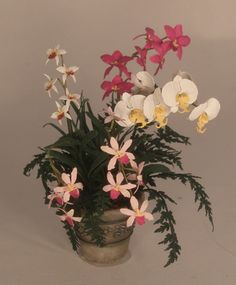 Orchid's in Planter #2 by Paula Gilhooley