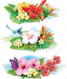 Картинки по запросу тропические цветы фото