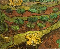 Olive Trees against a Slope of a Hill - Vincent van Gogh - Painted in November-December 1889 while in the Saint-Rémy Asylum - Current location: Amsterdam: Van Gogh Museum ...............#GT