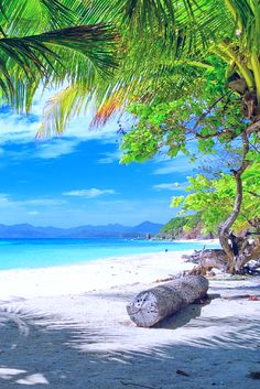 Philippines Travel Guide - Easy Planet Travel - Benefits of nature travel. What is natural travel? Most Beautiful Beaches, Beautiful Places To Travel, Beautiful World, Beautiful Ocean, Voyage Philippines, Philippines Travel Guide, Dream Vacations, Vacation Spots, Jamaica Vacation