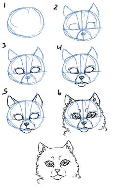 How to Draw Cat Faces/Heads- Front View Animal Sketches, Animal Drawings, Pencil Drawings, Art Sketches, Art Drawings, Drawing Lessons, Drawing Techniques, Art Lessons, Cat Face Drawing