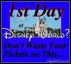 The Day You Arrive at Disney World, Don't Waste Your Tickets on This…(or, ideas on what to do at Disney without tickets!)