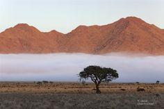 Land Of The Brave, Namib Desert, Namibia, Landscape Sketch, Desert Dream, Monument Valley, South Africa, Grand Canyon, Diesel