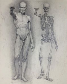 Exceptional Drawing The Human Figure Ideas. Staggering Drawing The Human Figure Ideas. Male Figure Drawing, Figure Sketching, Figure Drawing Reference, Anatomy Reference, Human Figure Sketches, Human Sketch, Human Anatomy Drawing, Body Drawing, How To Draw Anatomy