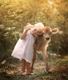 Baby girl and baby cow. Cute animal and child.