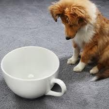 135 Best Caffeinated Dogs Images Breakfast Coffee