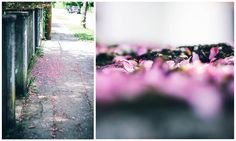 Sommer, Sonne, Sonnenschein by Manuela Unterbuchner, via 500px