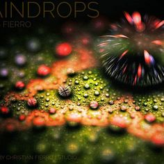 """""""Raindrops (over an imaginary stone)""""  Created with JWildfire mini + Snapseed 😉😉  #digitalart #digitaldrawing #digitalartist #digitalartist_studio #digitalartwork #artwork #art #artoftheday #rendered #contemporaryart #abstractart #abstract #abstracto #arte #arteabstracto #chileanartist #artechileno #gallery #galleryart #instaart #instaarte #instaartist #stylish #classy #fractals #color #cf_estudio #mobileartistry Snapseed, Art Day, Insta Art, Fractals, Contemporary Art, Abstract Art, Digital Art, Art Gallery, Classy"""