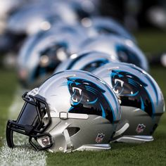 Panthers!