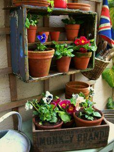 My little garden #lavenderhousevintage #vintage #shabbychic #homedecor #interiors #spring #flowers #gardens