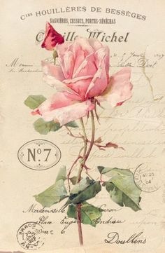 Vintage rose sepia Digital collage Free for personal use.Charming Art by Vastí Fernandes: More pictures for decoupagem and scrap decor.Pink rose on ad with postmarks.This Pin was discovered by Dana Batho @ Peacock & Fig Cross Stitch…Vintage Shabby Chic