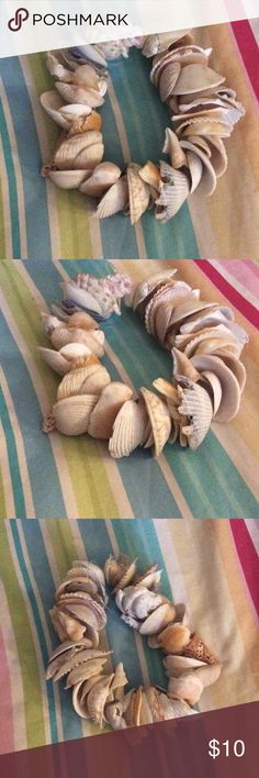 Gorgeous handmade shell bracelet. This pretty bracelet is completely homemade with all real shells I picked myself and added holes. I do understand the price is a little high, and am willing to dicker. Jewelry