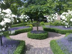 Formal Garden Designs and Ideas Have you ever really thought about how many people see the outside of your home? Back Gardens, Small Gardens, Formal Gardens, Outdoor Gardens, Formal Garden Design, French Formal Garden, Boxwood Garden, Olive Garden, White Gardens