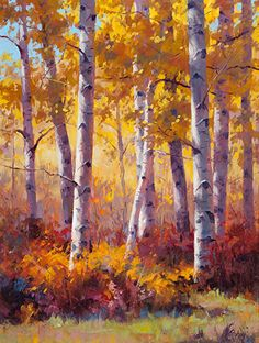 Aspen and Oaks by Robert Rohm Oil ~ 24 x 18