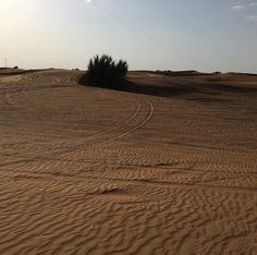 #dubai #cool #nice #travel #trip #awesome #amazing #photo #photooftheday #desert #follow4follow #f4f